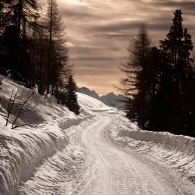snowy road website