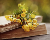 Bibles with flowers