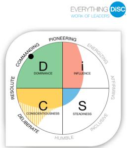 DiSC Work of Leaders
