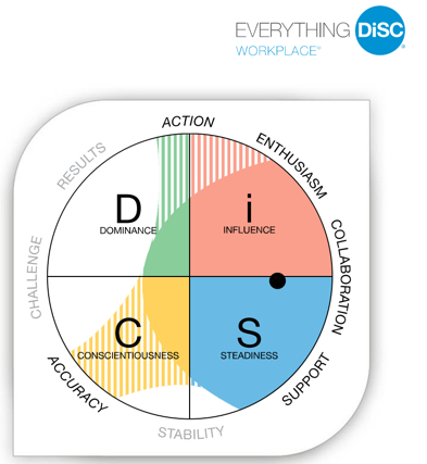 Everything Disc Workplace 174 Profile Bishop House Consulting
