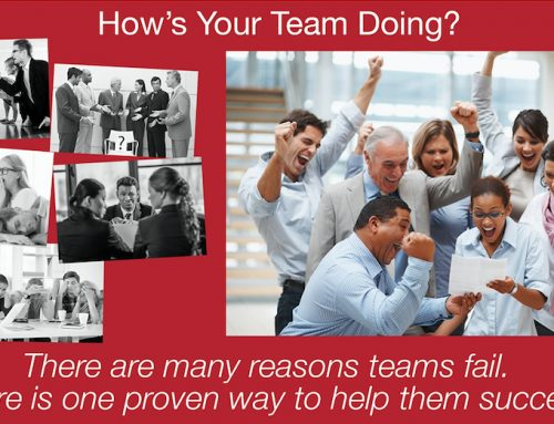 How's Your Team Doing? Team Assessment Package Special